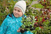 Boy With A Sprig Of Aronia