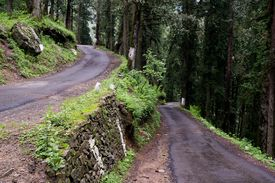 stock photo of twisty  - Twisty road through the forest to Hatu Peak in India - JPG