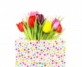 Bouquet Of Tulips In A Gift Bag