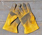 Old gloves on wood