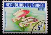 Guinea-circa 1964: Postage Stamp Printed In Republic Of Guinea Shows The Image With The Inhabitants