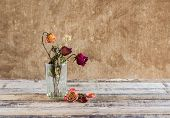 Withered Rose In Glass On Art Dark Background
