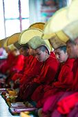 Puja Ceremony At Shechen Monastery, Nepal