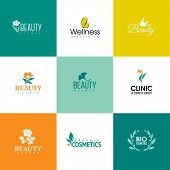 Set Of Beauty And Nature Logo Templates. Icons Of Flowers And Leaves
