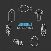 Vector icons set for allergens (milk, fish, egg, gluten, wheat, nut, lactose, corn, mushroom) on dark background
