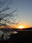 Sunsetoverlakethrutreefeb06