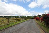 Driveway to the farmland