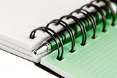 Open Notebook With Green Pen