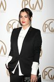 LOS ANGELES - JAN 24:  Alanna Masterson at the Producers Guild of America Awards 2015 at a Century Plaza Hotel on January 24, 2015 in Century City, CA