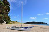 Catamaran Boat On Hot Water Bech - New Zealand