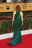 LOS ANGELES - JAN 25:  Julianne Moore at the 2015 Screen Actor Guild Awards at the Shrine Auditorium on January 25, 2015 in Los Angeles, CA