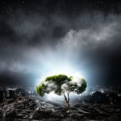 Green tree as a symbol of environmental protection