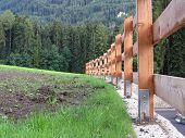 Wooden Fence With Forest In The Background