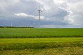 picture of wind-farm  - Wind farm and vegetables on a field in spring - JPG