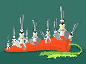 picture of hare  - Rabbits and carrots - JPG