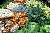 pic of stall  - Fresh organic vegetables green cabbage corn garlic onion on a market stall - JPG