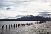 picture of natal  - The remains of an old pier now a resting place for seabirds - JPG