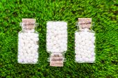 image of placebo  - homeopathic pills on a natural grass background - JPG