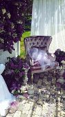 picture of canopy  - lilac composition on the street under a canopy are vases with bouquets of lilacs and chair - JPG