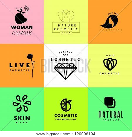 Vector simple flat cosmetic logo poster