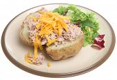 Jacket potato with tuna mayonnaise and cheese.