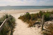 Wüste Strand