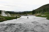 Yellowstone Flyfish