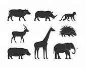 Постер, плакат: Black Silhouettes African Animals Vector Figure African Animals