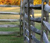 Split Rail Fence