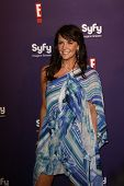 SAN DIEGO - JUL 23: Amanda Tapping at the SyFy/E! Comic-Con Party at Hotel Solamar in San Diego, Cal