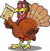 Turkey With Pardon.Eps