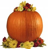 Fall Flowers With Pumkin On White
