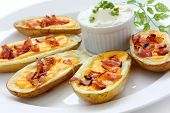 potato skins , casual dining appetizer