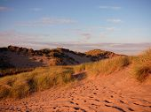 Sand Dunes At Balmedie