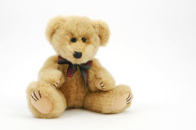picture of stuffed animals  - Small teddy bear sitting isolated on white - JPG