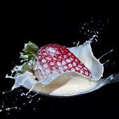 Strawberry And Cream Splash