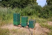 Three Bee Hives At A Forest Edge