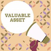 Word Writing Text Valuable Asset. Business Concept For Your Most Valuable Asset Is Your Ability Or C poster