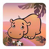 Friendly Hippo In Savanna