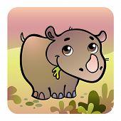 Friendly Rhino In Savanna