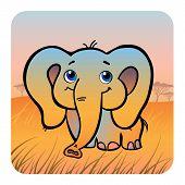 Friendly Elephant In Savanna