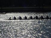 Competencia de canoa