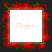 Christmas Holiday Season Background Of Red Poinsettia, Christmas Flower And Holly Berries With Copy  poster