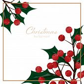 Christmas Holiday Season Background Of Holly Berries Branch With Copy Space.  Design For Greeting Se poster
