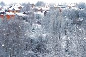Winter Of Cities, Trees, Frost. Snowfall On Scandinavia. In The Air A Lot Of Snowflakes Are Flying.  poster