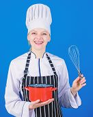 Ensuring Optimal Performance. Professional Chef Smiling With Cooker And Whipping Tool. Cute Kitchen  poster