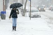 NEW YORK - JANUARY 23: A pedestrian uses an umbrella to shield herself from snowfall on January 23, 2005 in Flushing, NY. Parts of New York City area was hit with over a foot of snow.