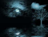 Moonlight Glow
