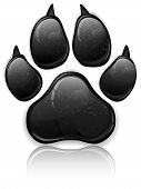 picture of paw  - Black animal paw print isolated on white vector illustration - JPG