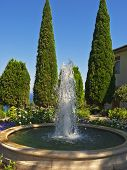 Fountain In The Background Of Cypress